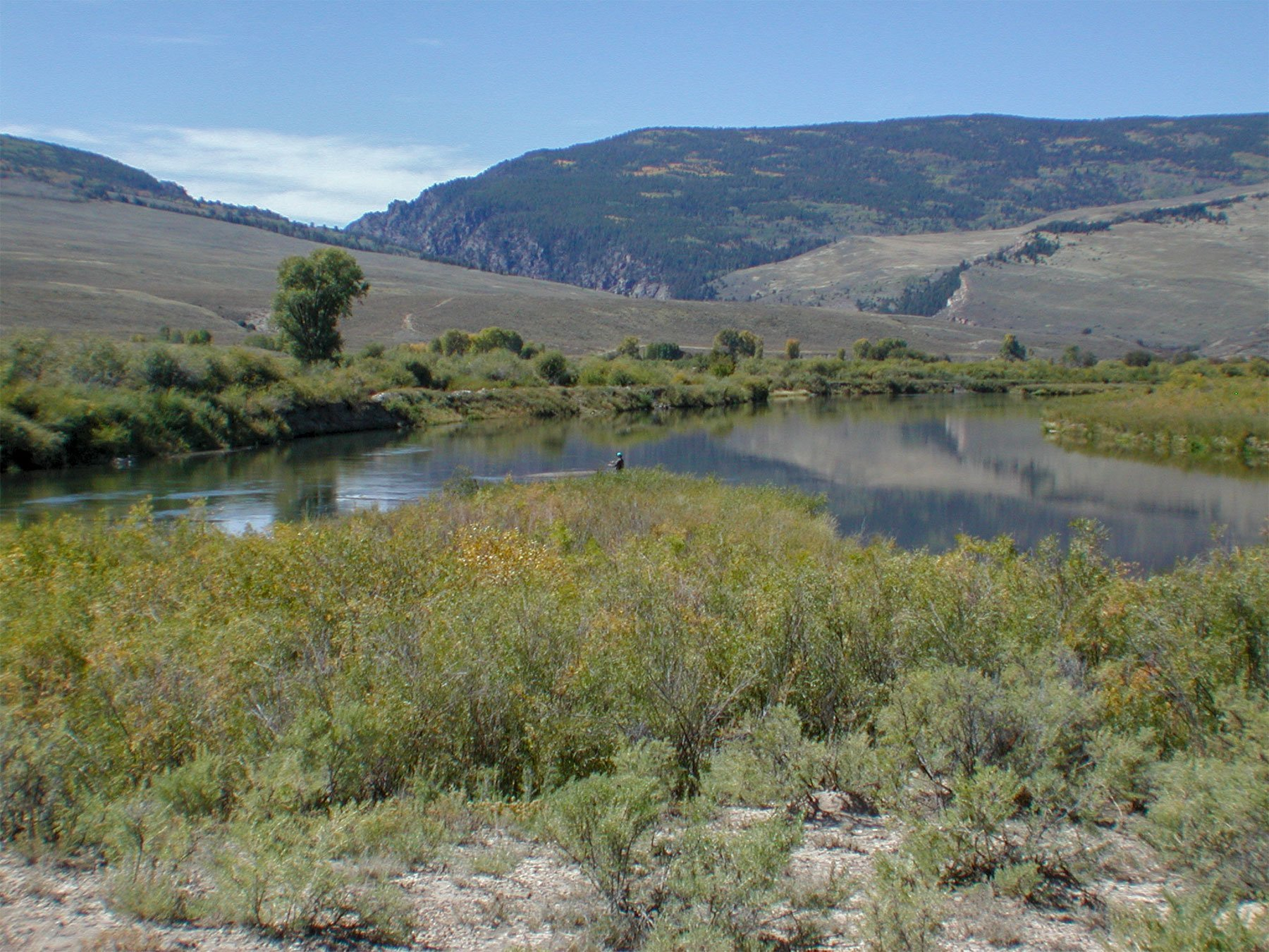 Blue River north of Silverthorne