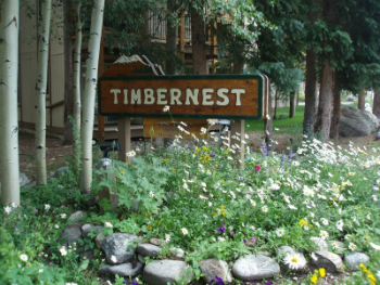 timbernest condos for sale